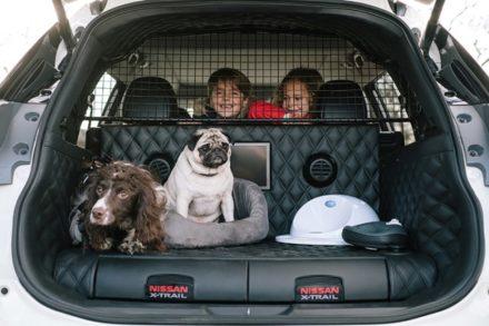 Автомобиль для комфортных поездок с животными