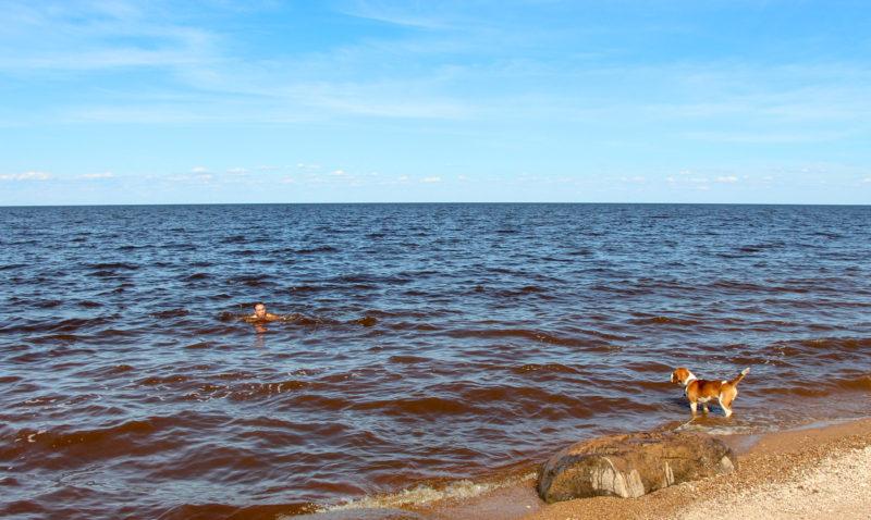 озеро Ильмень на Россия, Новгородская область (Озёра и карьеры)