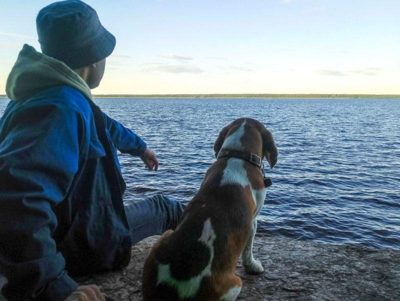 Бигль на озере Глубокое