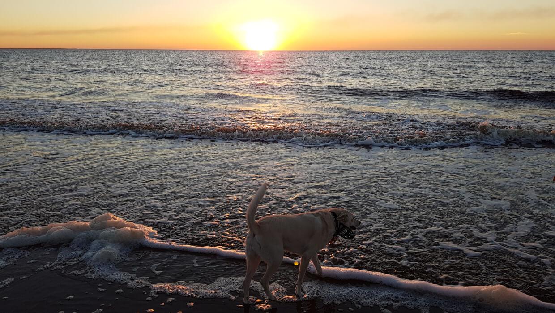 Белое море или исполнение мечты!