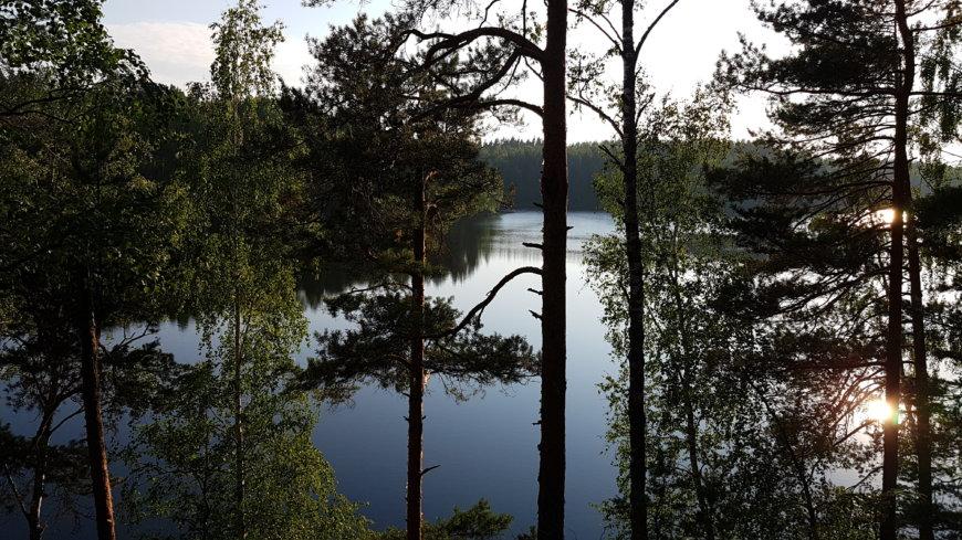 Ястребиное озеро на Ленинградская обл., Россия (Озёра и карьеры)