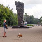 Бигль у памятника металлургам в Череповце