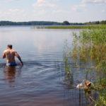 Бигль на озере Ферапонтовское