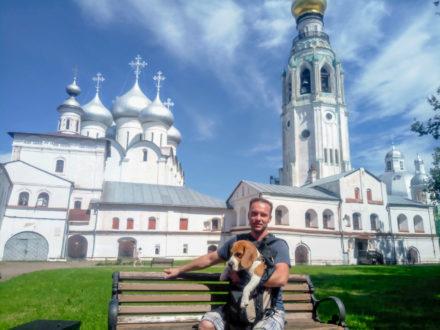 Бигль в Вологде