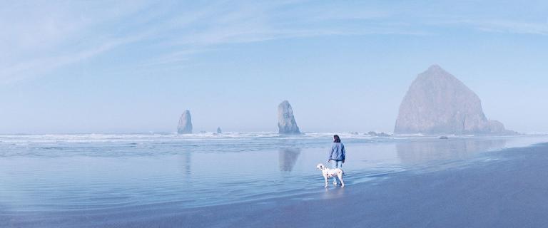 Места для путешествий с собакой