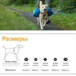 Размеры рюкзака для собаки Ruffwear