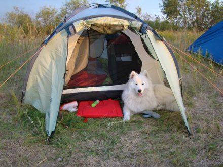 Палаточный лагерь со Стаси на острове под Нижним Новгородом