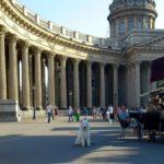 Собака в Петербурге