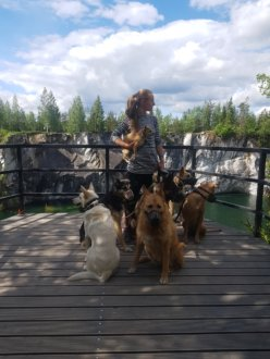 парк Рескеала с собаками 2019