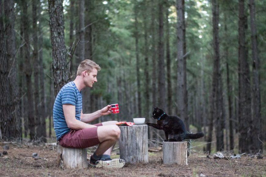 Путешествия Рича и кошки Ивы по Австралии