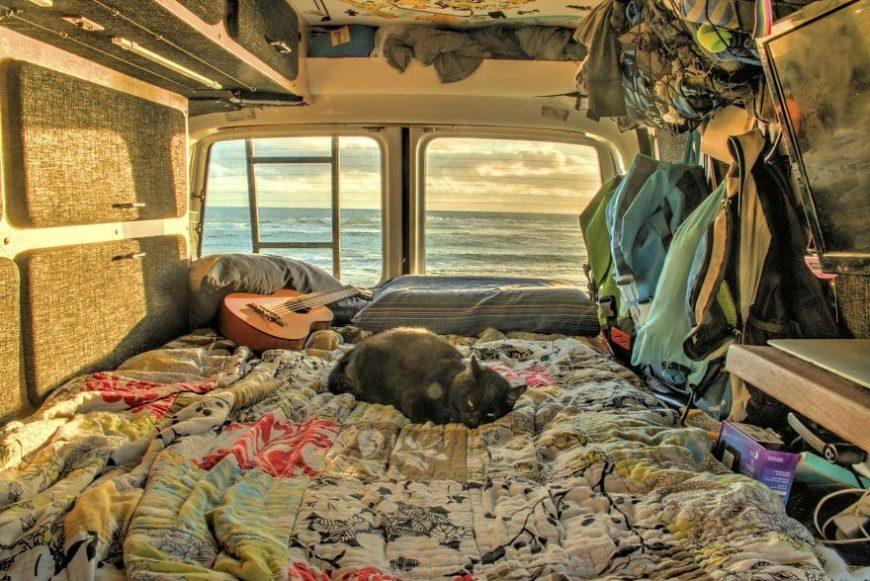 Путешествия кошки в автодоме