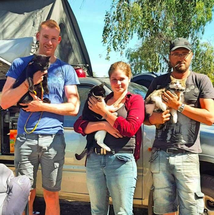 Путешествующие по миру кошки