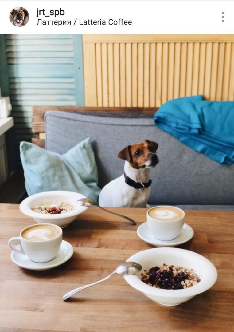 Латтерия / Latteria coffee на ул. Маяковского,  16 (Кафе)