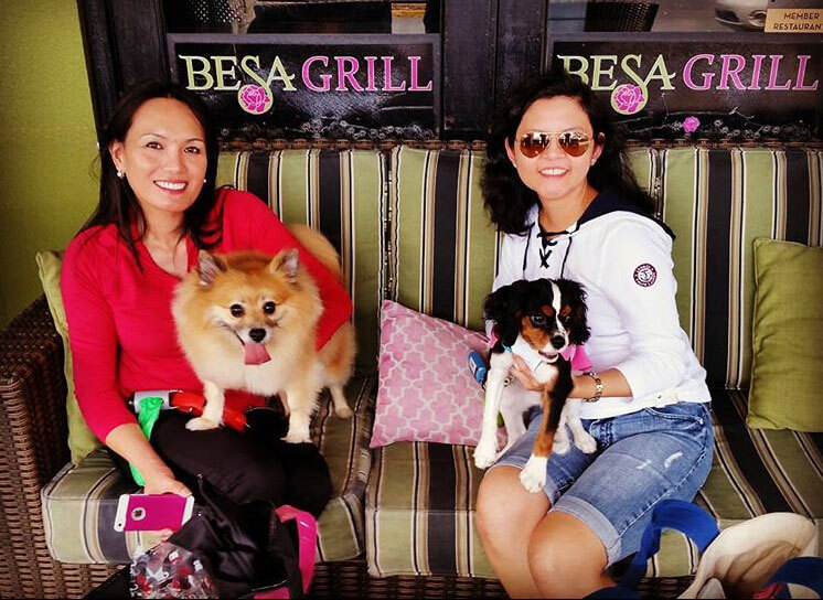 Besa Grill на 2542 N McMullen Booth Rd,  Клируотер (Кафе)