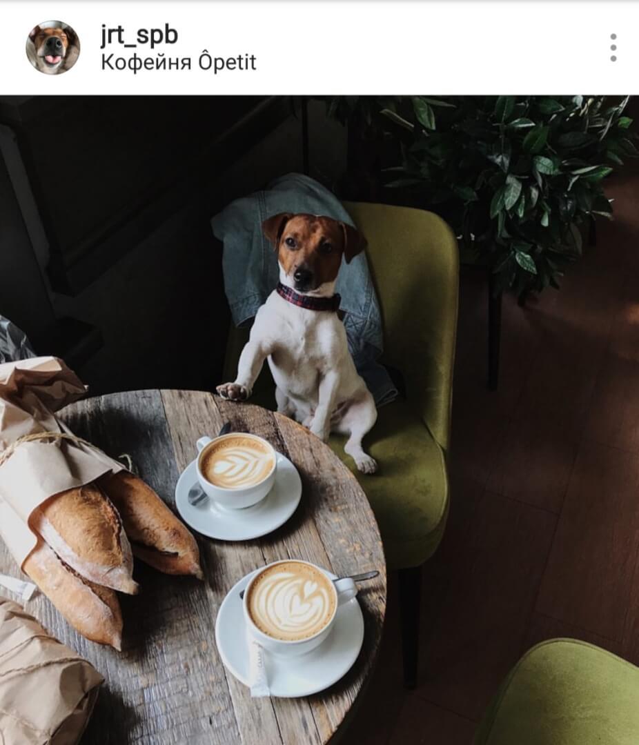 кофейня Opetit на ул. Блохина,  23 (Кафе)
