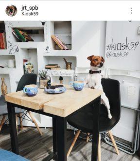 "Кафе ""Kiosk59"""