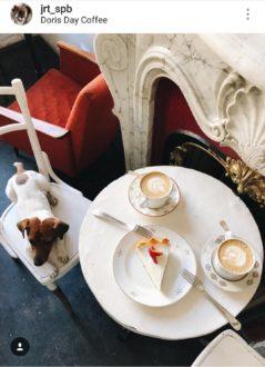 """Кафе """"Doris Day"""""""