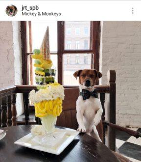 """Кафе """"Mickey and Monkeys"""""""