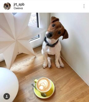 """Кафе """"Смена"""""""