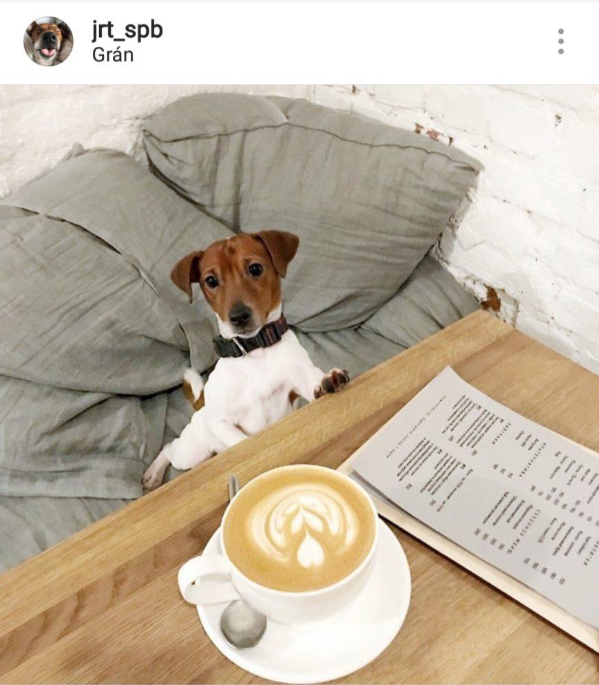 Gran на Гороховая ул., 46 (Кафе)