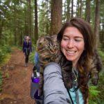 Коты-путешественники Болт и Кил в Инстаграм