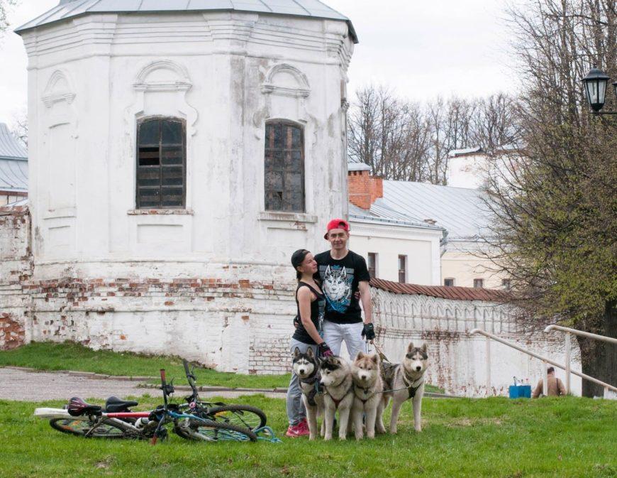 Во Владимире с собаками на велосипедах