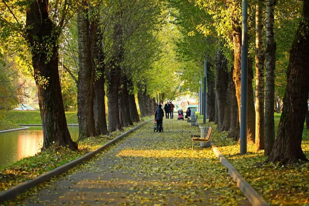 Красная Пресня на Парк Красная Пресня,  ул. Мантулинская,  5 (Парки)