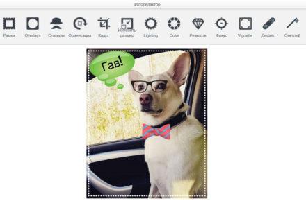 Редактирование фотографий прямо на сайте Pet-Trips
