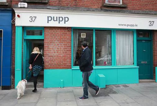 Pupp на 37 Clanbrassil St Lower,  Дублин (Кафе)