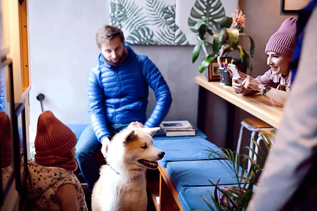 Surf Coffee на Солянке на ул. Солянка,  1/2 строение 1 (Кафе)