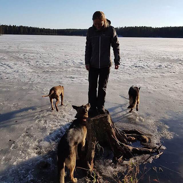Щучье озеро на Озёрная ул., 43-45 (Озёра и карьеры)