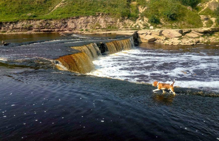Тосненский водопад на ул. Аксакова, 2 (Природные достопримечательности)