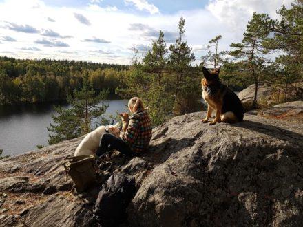 Ястребиное озеро с собаками