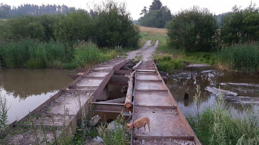 Мост к Ястребиному озеру