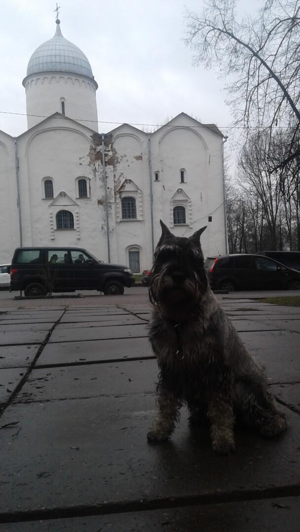 Кремлевский. Ярославово дворище на ул. Мерецкова-Волосова,  4,  Великий Новгород (Парки)