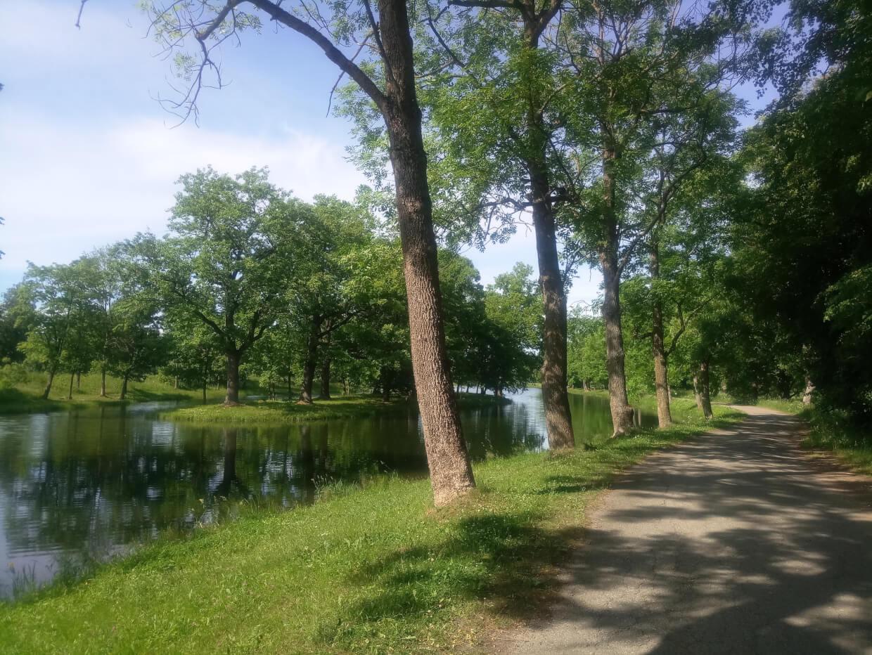 Луговой парк в Петергофе