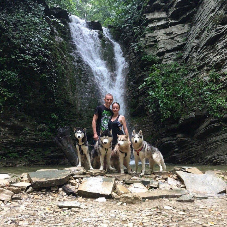 Собаки Хаски у водопада