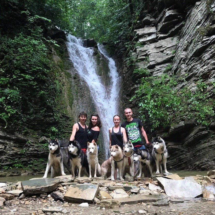 Собаки Хаски с хозяевами у водопада