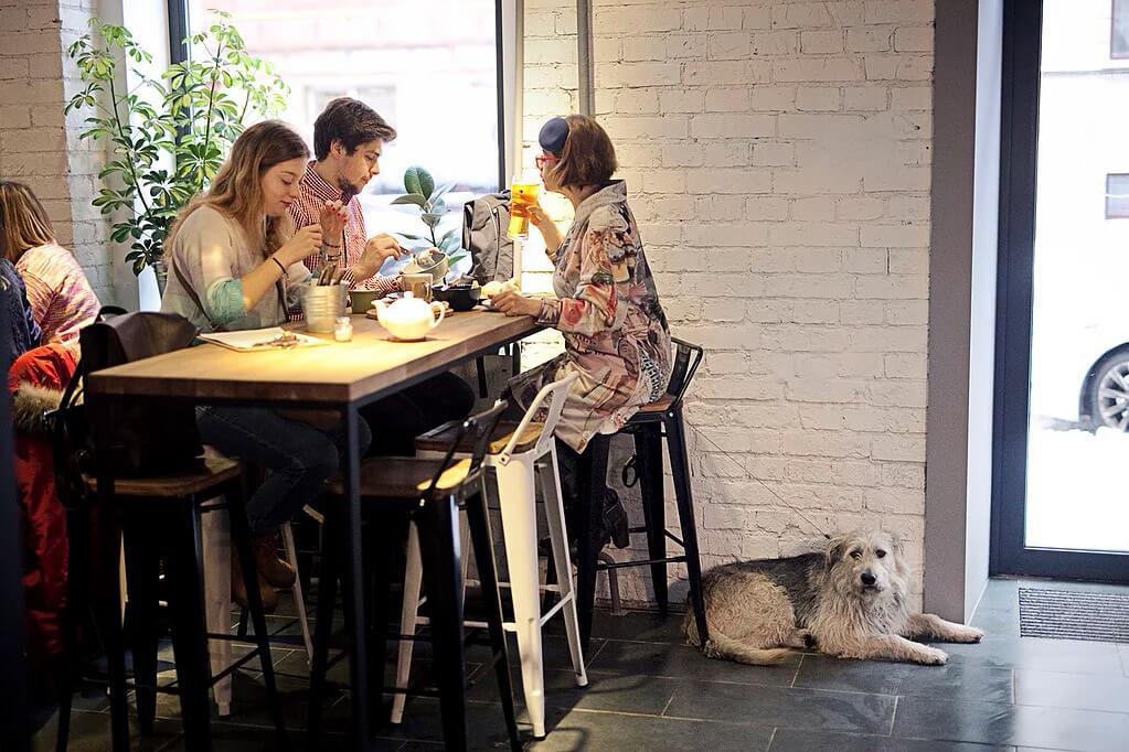 Хинкали Point на Лесная ул.,  20 строение 1 (Кафе)