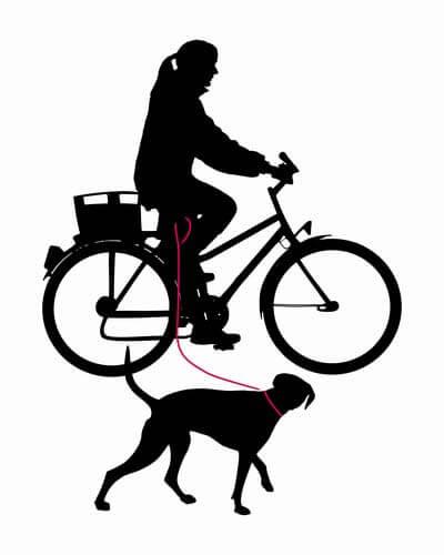 Лучший поводок для собаки на велосипед