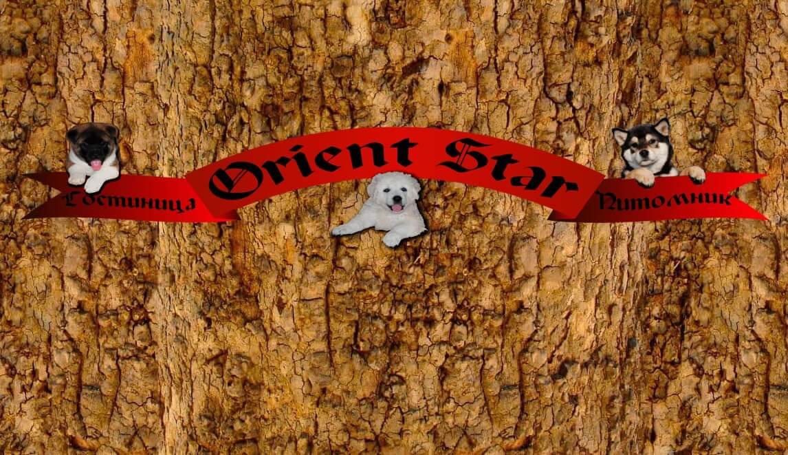 Orient Star на ул. Овощеводов,  7 (Зоогостиницы)