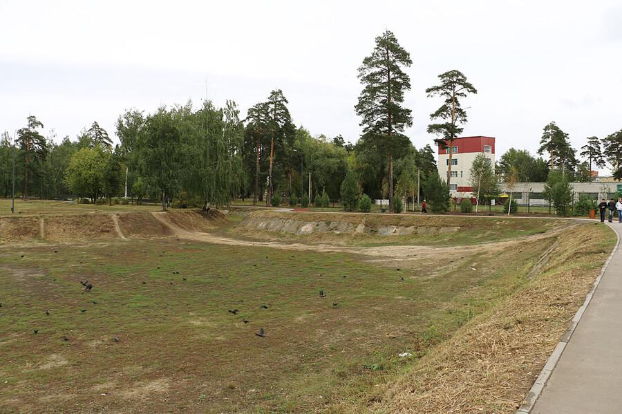 Площадка для собак в Казани