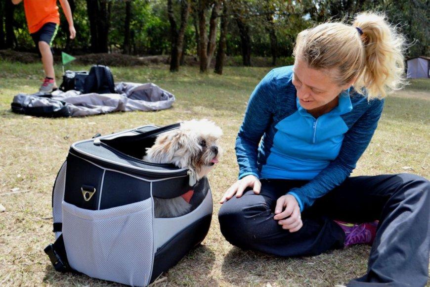 Рюкзаки для переноски собак и кошек
