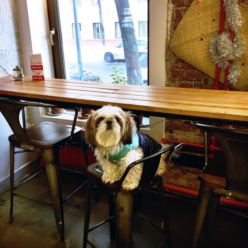Lao Lee на Миусская пл.,  9 строение 11 (Кафе)