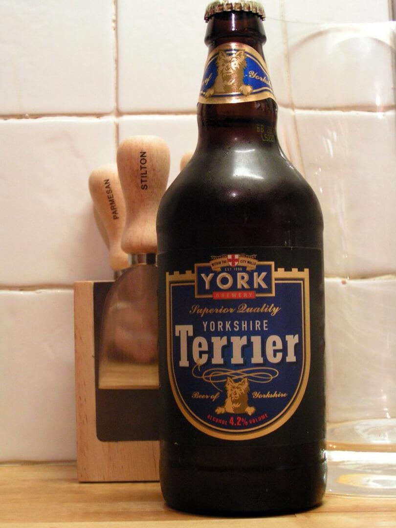 Yorkshire Terrier на  (Бары)
