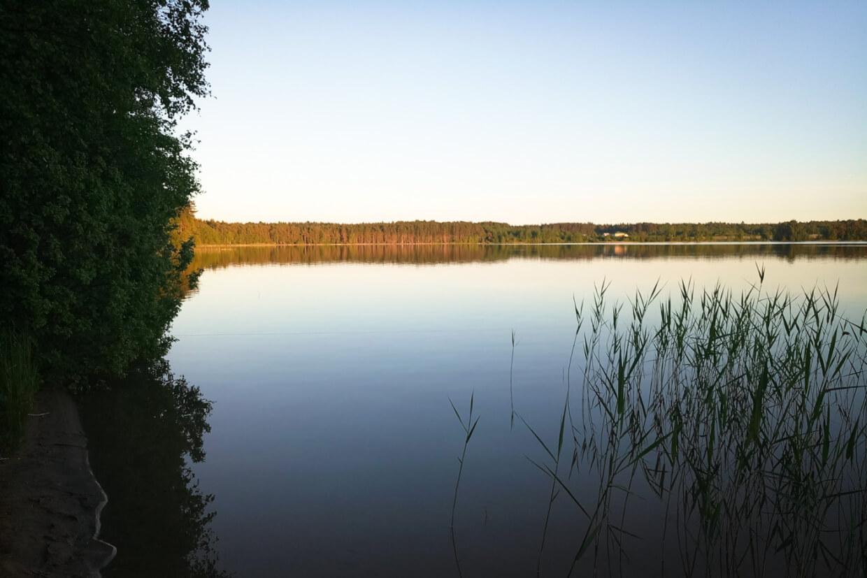 Снетковское озеро на 41К-12,  Ларионово (Озёра и карьеры)