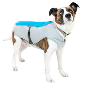 Охлаждающие жилет для собак FrontPet