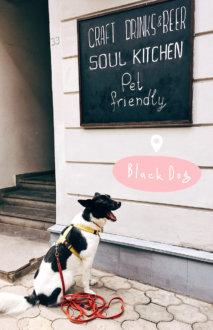 Black Dog на 15/33 Geronti Kikodze St,  T'bilisi (Бары)