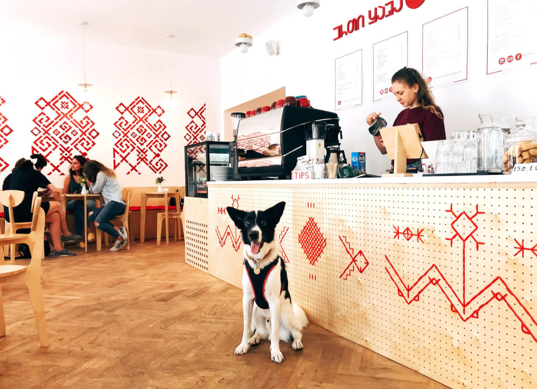 Erti Kava на Zugdidi Jvari Mestia Lasdili,  Mestia (Кафе)