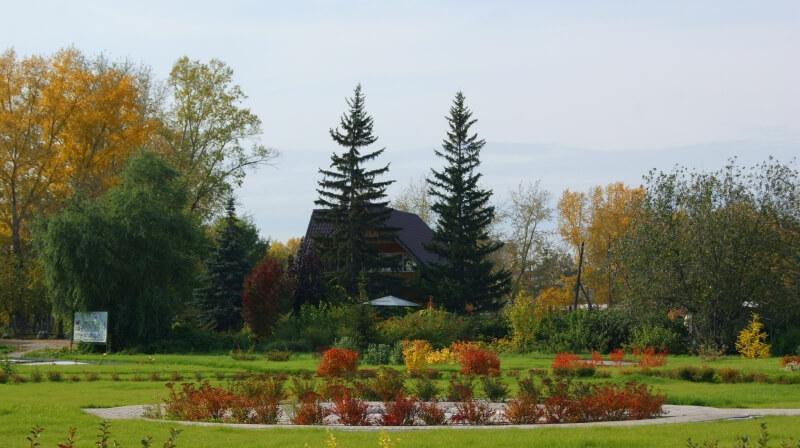 Сад Мичуринцев на ул. Никитина,  153 (Парки)
